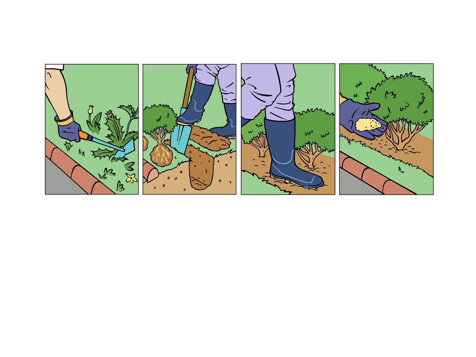 VANDEELENFred-Illustrations-BOTANIQUE-2761