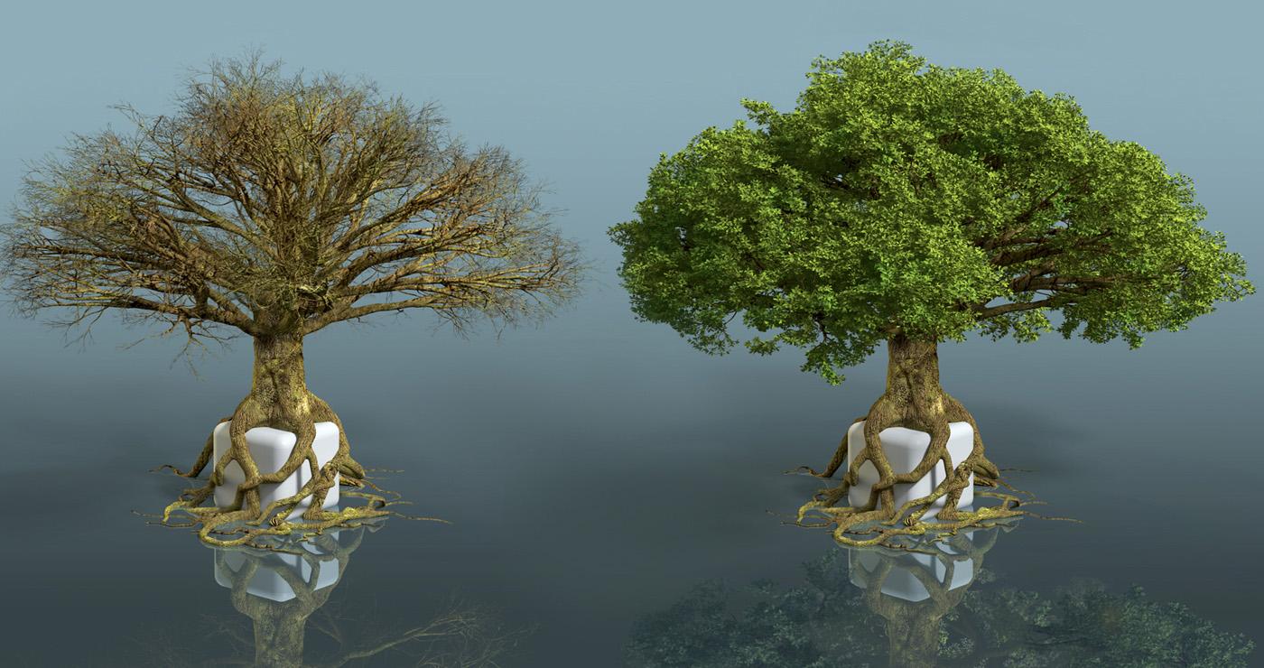 illustration-3D-marcel-laverdet-vegetation-jeu-04
