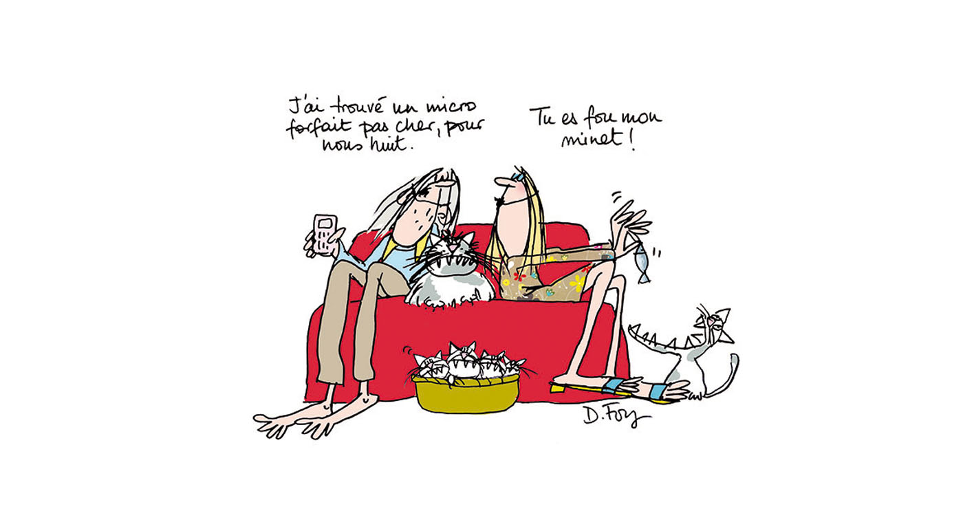 dominique-foy-illustration-chats