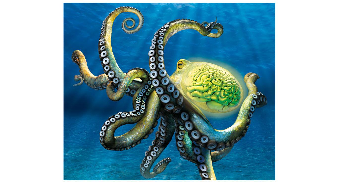illustration 3D francois poulain seaquarium 3 12jpg