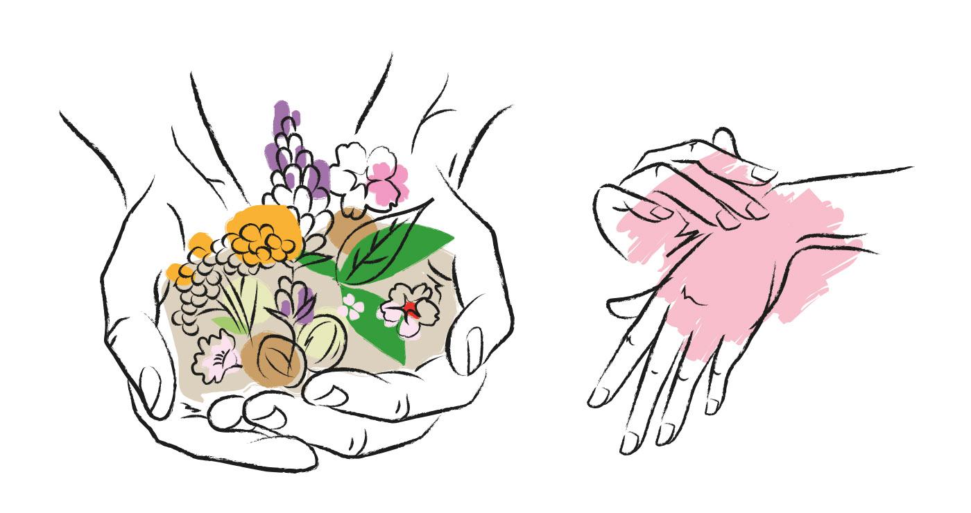 illustration-alexia-cambournac-mains-occitane-12