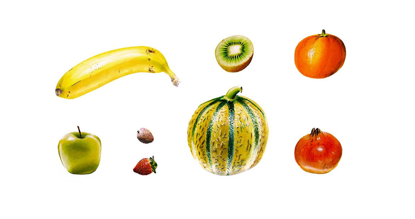 illustration benoit tastet alimentaire fruitsfeutre