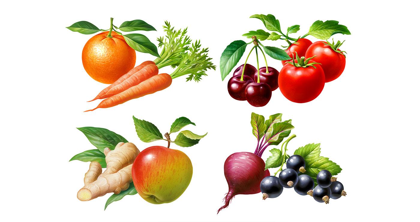 illustration fred van deelen fruits 01