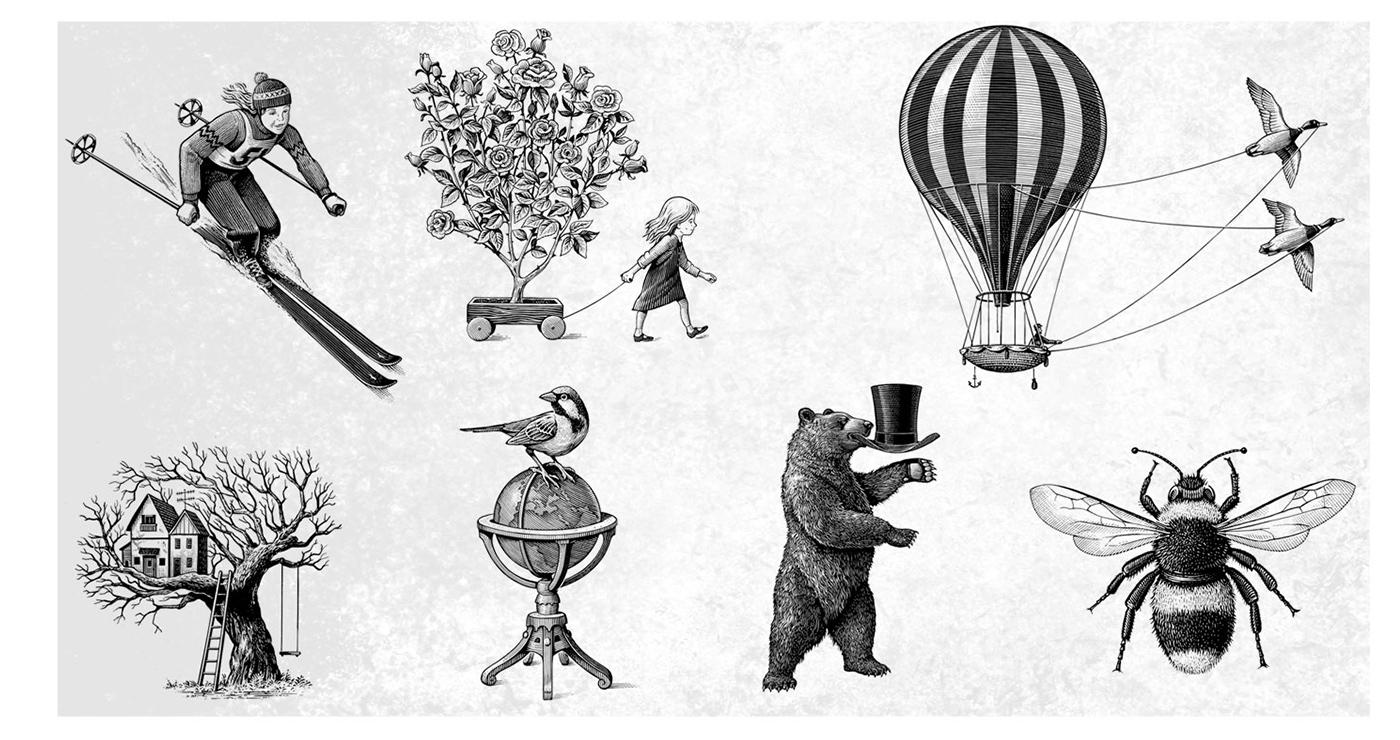 illustration frederik gravure animaux objets 02 1