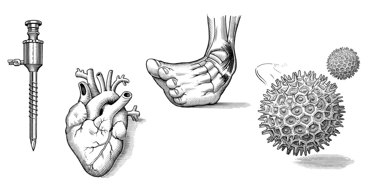 illustration frederik gravure medical 02 1