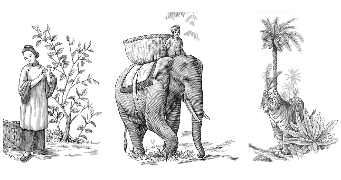 illustration frederik gravure the 01 1