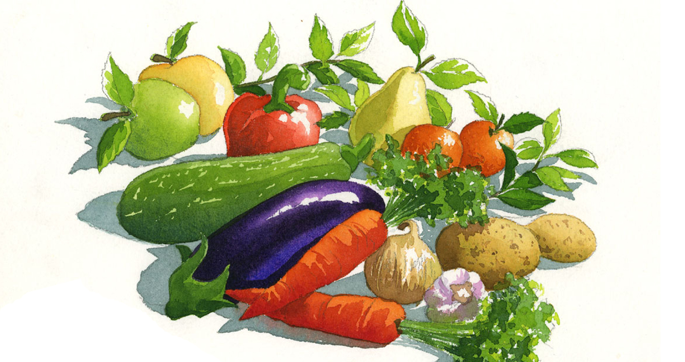 illustration-yves-perron-aquarelle-legumes
