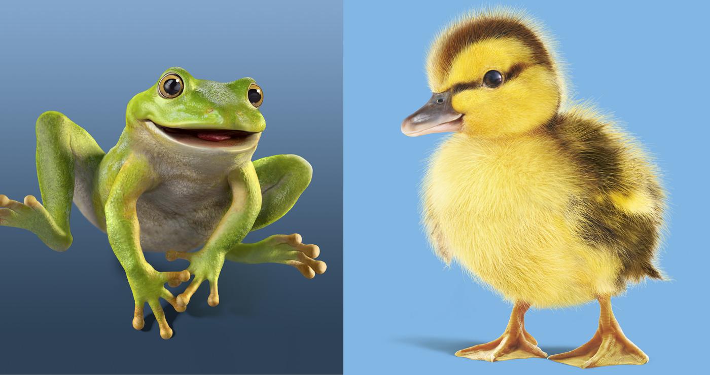 illustration3d-celmar-poussin-animaux-02