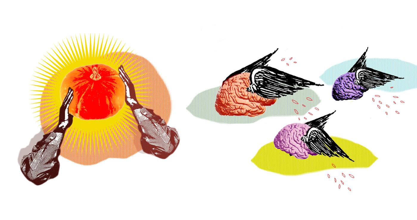 illustration gabrielle cerveaux 07