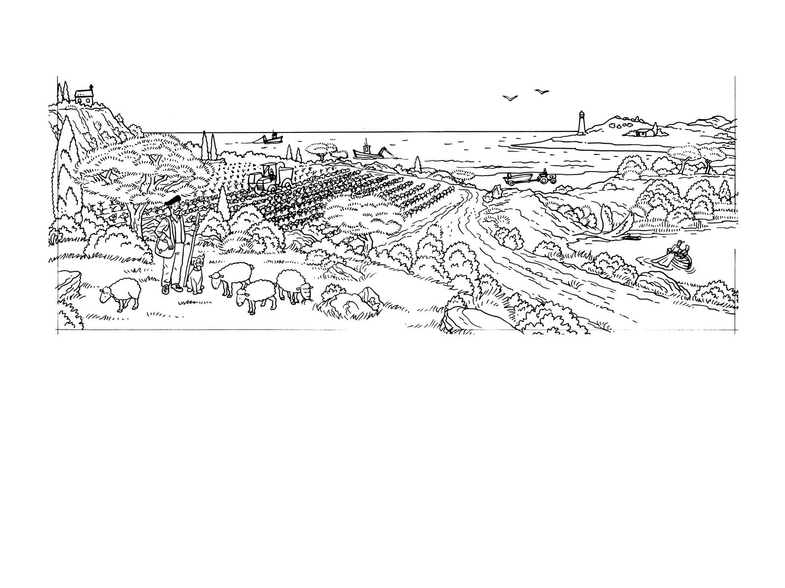 illustrations-manuelfontegne-7253