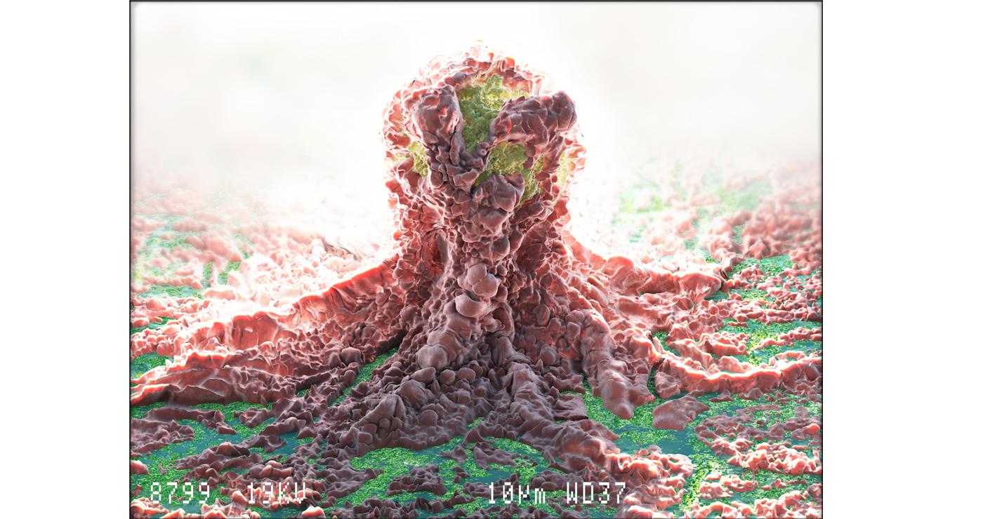 laverdet-3d-medical-cellule