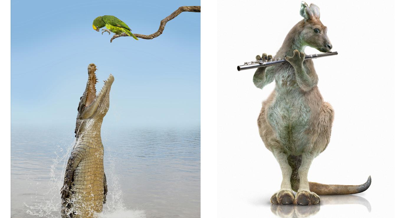 illustration-3D-marcel-laverdet-animaux-humour-02