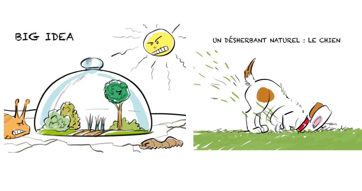 rough workshop manuel fontegne jardinage 2